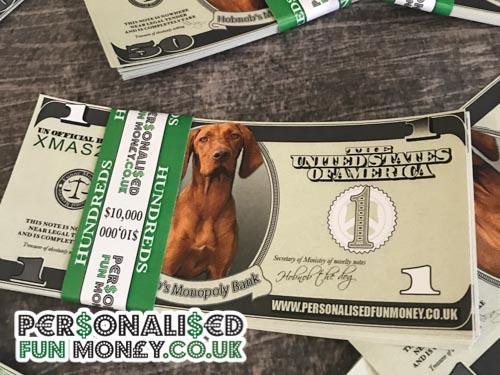 Dollar bills for Monopoly